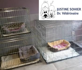 Sohier Justine - Cabinet Vétérinaire